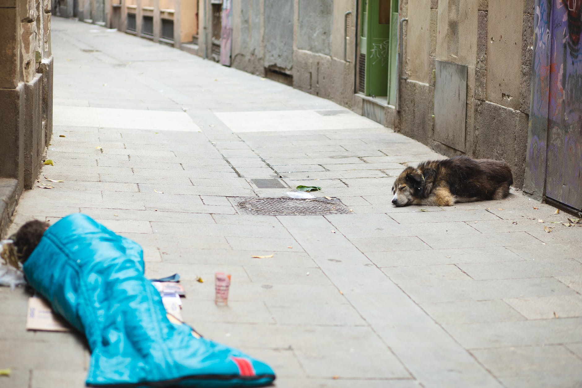 houseless person with dog sleeping on street